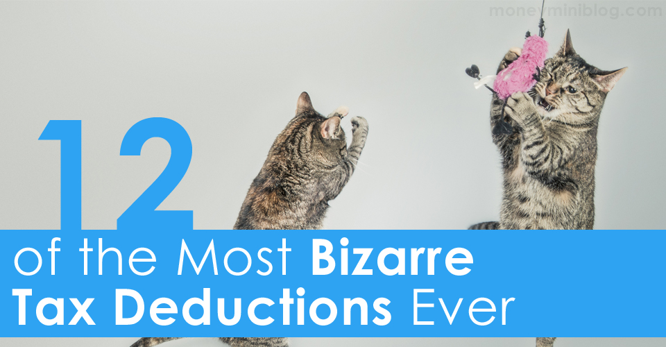 12 of the Most Bizarre Tax Deductions Ever [Infographic]
