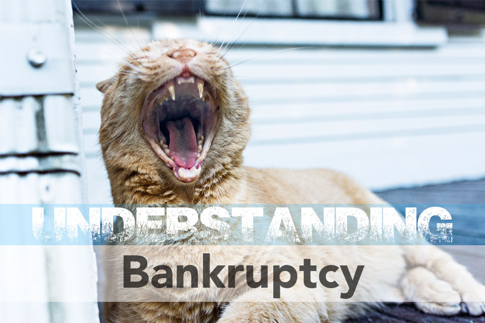 Understanding Bankruptcy: The Reasons for Filing and the Results
