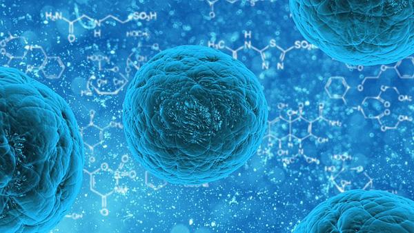 ALS Stem Cell Funding