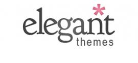 Elegant Themes blogging